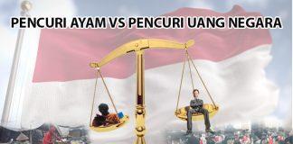 PENCURI AYAM VS PENCURI UANG NEGARA